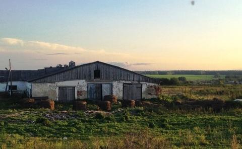 Продам ферму - Фото 2