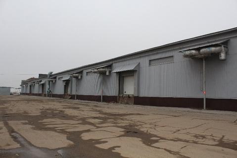 Складское помещение 2312 кв м на Вольском тракте - Фото 4