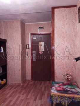 Продажа комнаты, м. Ладожская, Наставников пр-кт. - Фото 2