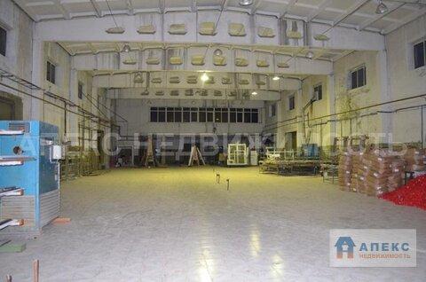 Продажа помещения пл. 5100 м2 под производство, , офис и склад, . - Фото 3