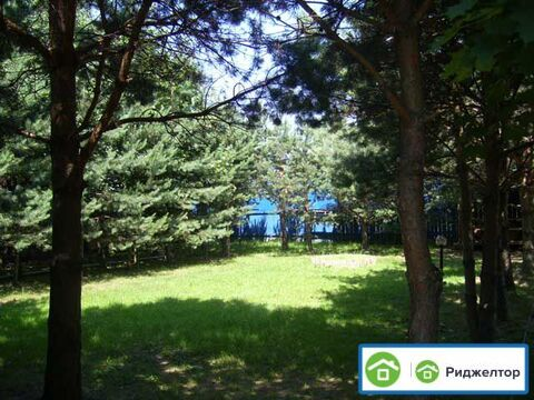 Аренда дома посуточно, Покровское, Волоколамский район - Фото 2
