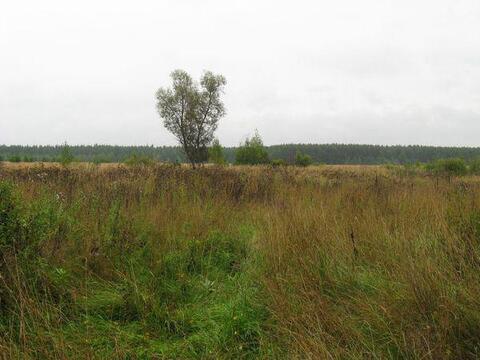 28 соток в д.Шопино, Клепиковского района, Рязанской области. - Фото 2