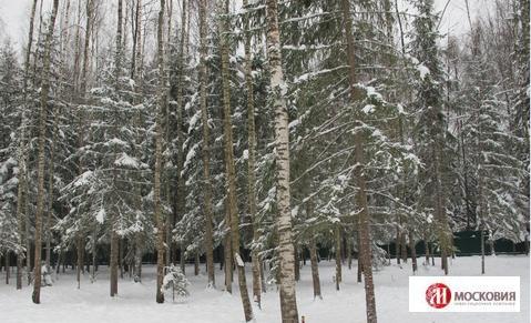 Земельный участок 15 соток, Новая Москва, Троицкий ао, д. Шаганино - Фото 1