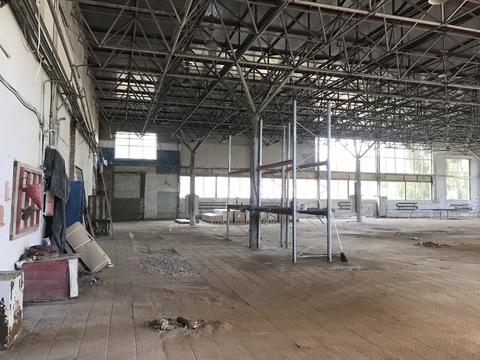 Сдается производственно-складское помещение 2000 кв. м. - Фото 4