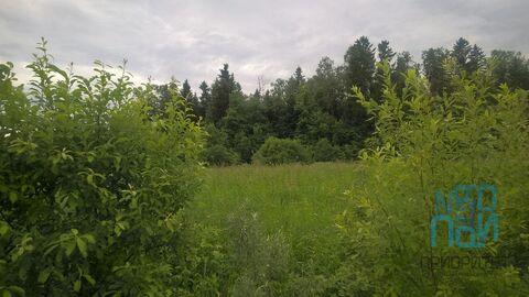 Продажа участка, Петелино, Одинцовский район - Фото 5