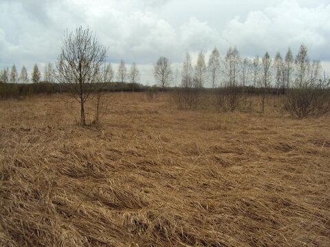 Продам земельный участок в Тверской области - Фото 1
