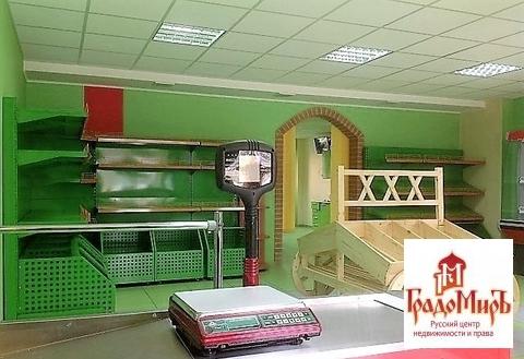 Продается торговое помещение, Пушкино г, Новая Деревня мкр, 86м2 - Фото 1