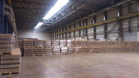 Сдам производственное помещение 12000 кв.м, м. Ладожская - Фото 5