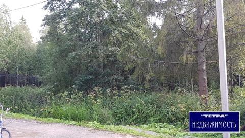 Продается лесной участок 12 соток в лесном коттеджном поселке - Фото 2