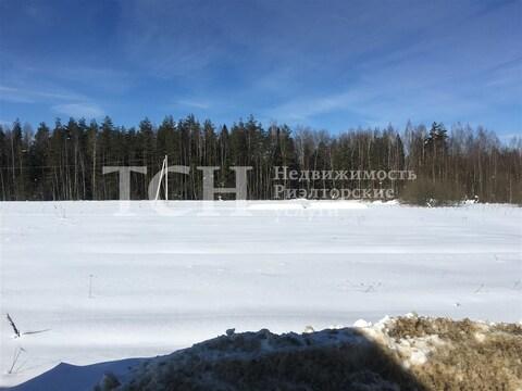 Участок, Щелковский, п Огудневского лесничества - Фото 3