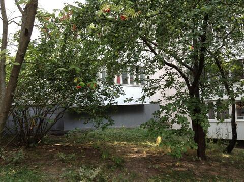 Уютная трехкомнатная квартира в Ясенево - Фото 1