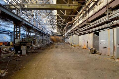 Сдам складское помещение 906 кв.м, м. Площадь Ленина - Фото 2