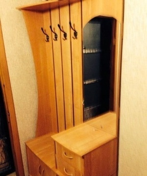 Сдам 1 комнатную квартиру Красноярск Ферганская 9 - Фото 5
