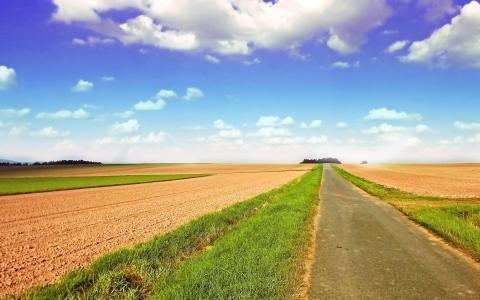 Земельный участок 15,6 га - Фото 2