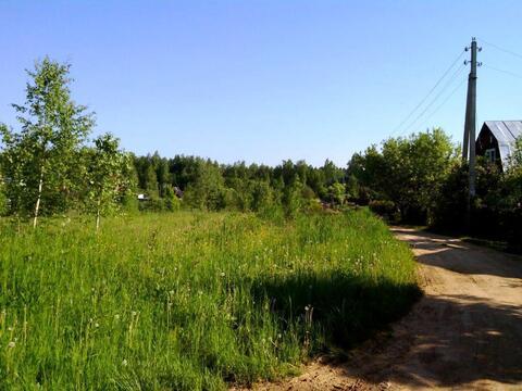 Лесной участок 6 Га (600 соток) на берегу озера. - Фото 3