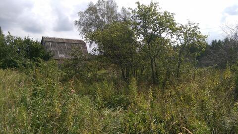 Участок 15 соток, в д.Сибилево(д.Купники), с кирпичным садовым домиком - Фото 3