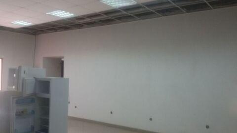 Аренда торгового помещения, Тюмень, Ул. Пархоменко - Фото 5