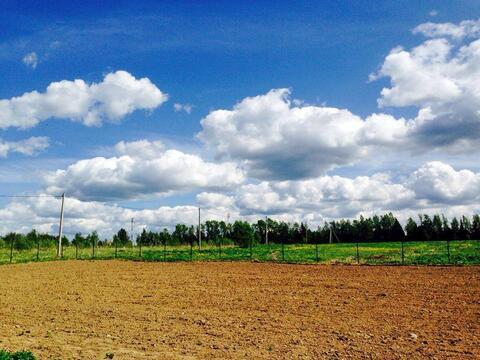 Участок 15 сот ИЖС в д. Нововолково, Озернинское водохранилище - Фото 2