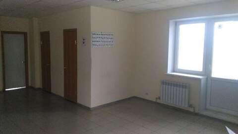 Продажа торгового помещения, Стрелецкое, Белгородский район - Фото 5