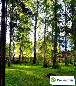 Аренда дома посуточно, Саргазы, Сосновский район - Фото 1