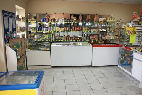 Магазин в Домодедово, мкр. Б.Столбы, д. Меткино - Фото 5