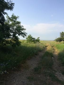 12 Га Симферопольский район - Фото 3