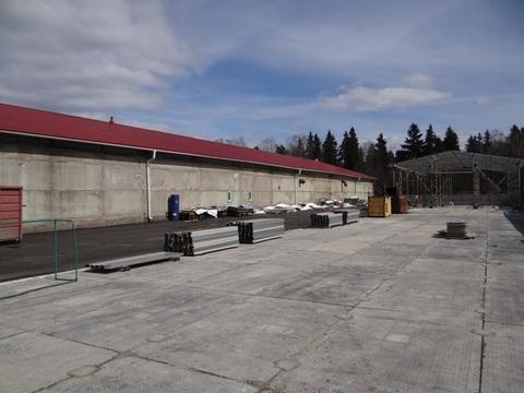 Производственно-складское помещение с организованным бизнесом - Фото 1