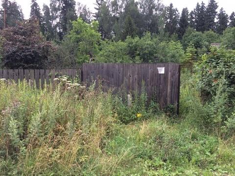 Участок в Ивантевке - Фото 1