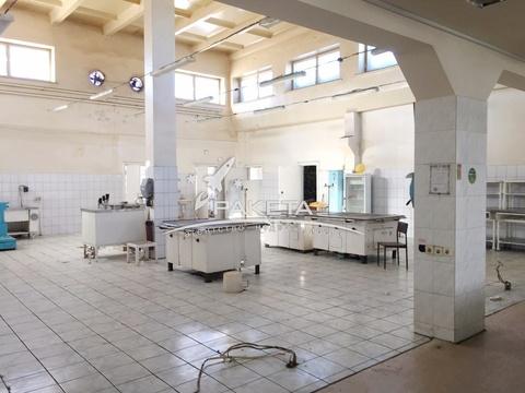 Продажа готового бизнеса, Ижевск, Воткинское Шоссе ул - Фото 5