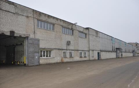 Сдам производственно-складской корпус 8 295 кв.м. - Фото 1