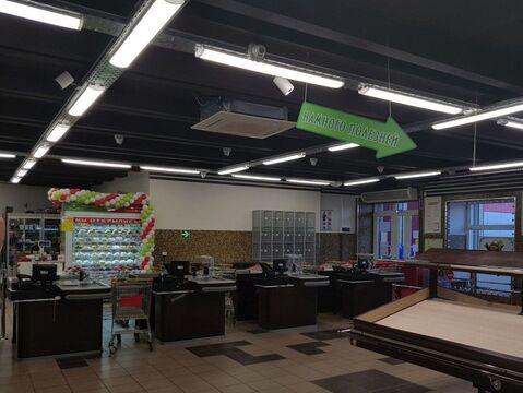 Торговое помещение свободного назначения 380 кв.м. в Митино в аренду - Фото 3