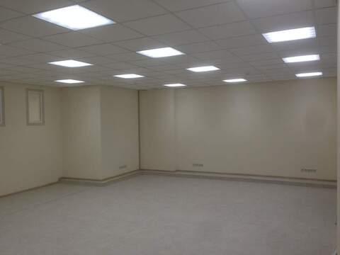 Торговое помещение в аренду 295 кв.м м.Московская - Фото 5