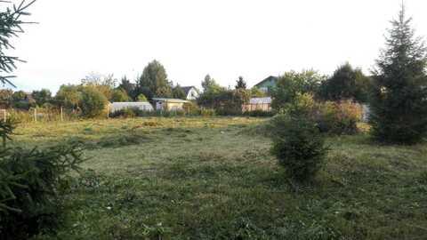 """Дача СНТ """"Березняки"""" - Фото 2"""