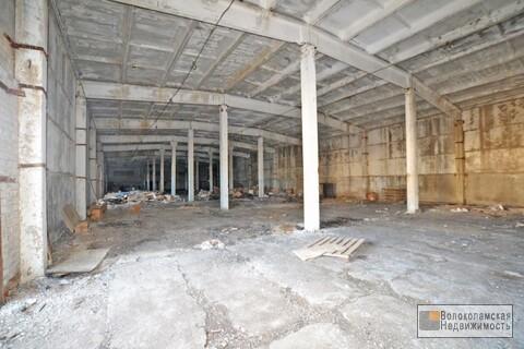 Производственная база в Лотошинском районе - Фото 4
