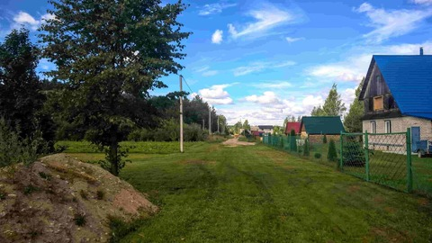 Участок 25 соток в пригороде Пскова, по границе сосновый лес - Фото 2