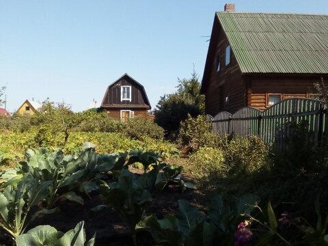 Продам пустой участок в СНТ Тихие зори, ухожен, Новосибирск Краснообск - Фото 2