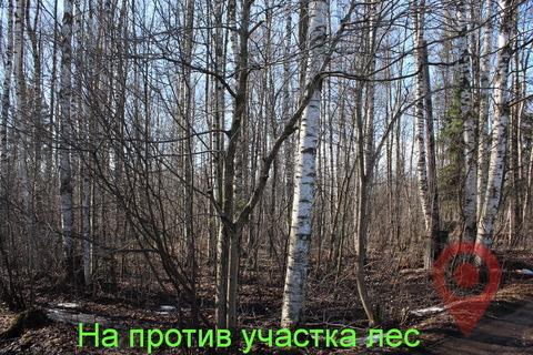 Продажа дома, Парголово, м. Проспект Просвещения, Сдт Левашово 13-я . - Фото 5