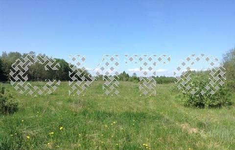 Продажа участка, Куность, Белозерский район - Фото 3