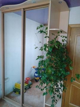 Квартиры, ул. Амурская, д.25 - Фото 3