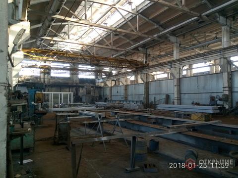 Производственное помещение (1000кв.м, 2 кран-балки по 5т) - Фото 1