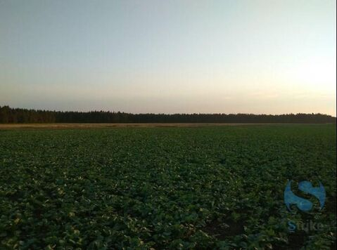 Продажа земельного участка, Успенка, Тюменский район - Фото 1
