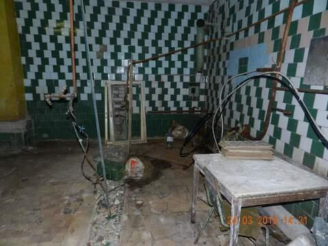 Производство 533 м2 поселок Селиваново - Фото 5