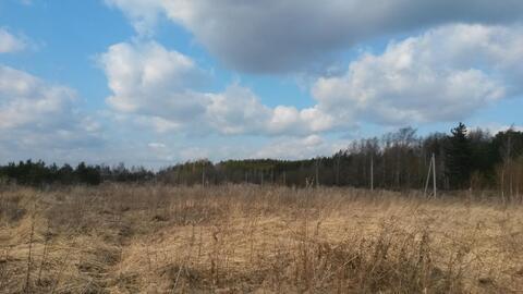 42 сотки ЛПХ в поселке Ланьшинский - Фото 3