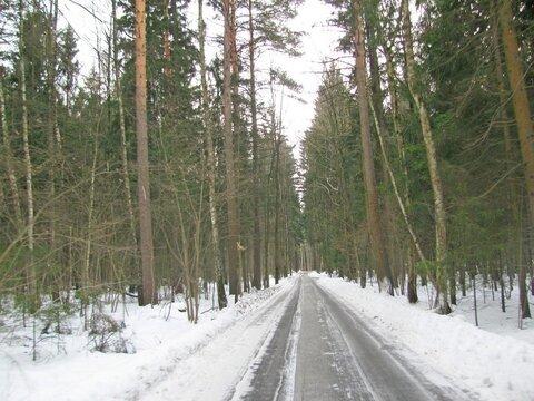 Участок 12 сот. , Боровское ш, 22 км. от МКАД. - Фото 5