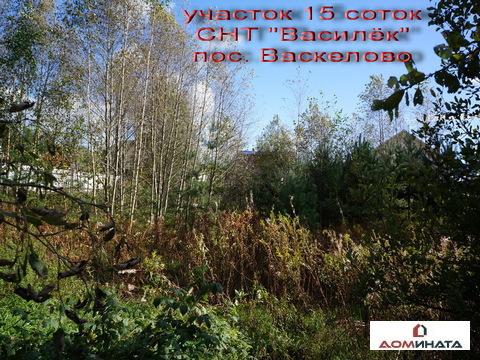 Продается участок 15 соток в пос. Васкелово - Фото 5