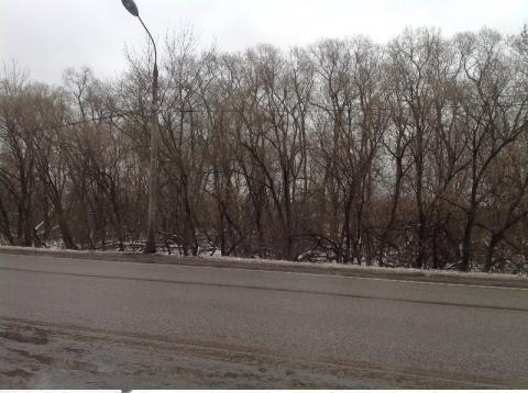Участок 15 соток Егорьевское шоссе - Фото 2