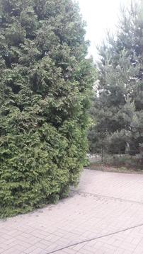 Дома, дачи, коттеджи, ул. Солнечная, д.4 - Фото 5