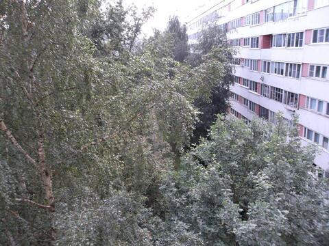 Отличная 3к.кв в 15мин пешком от м.пр.Просвещения - Фото 4