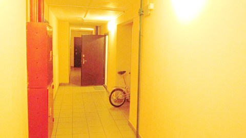 Купить Квартиру в спб, у метро Гражданский пр. - Фото 5