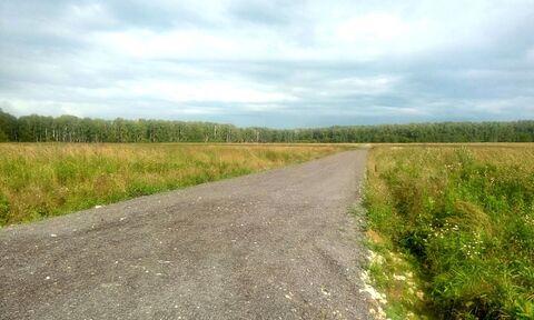 Продаем земельный участок, 25 соток, Татариново ИЖС - Фото 5